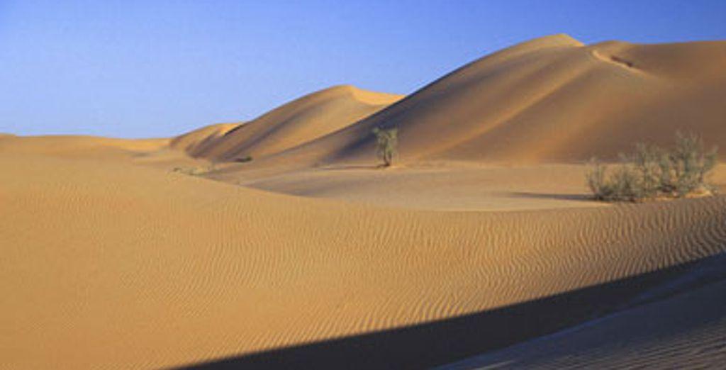 - Circuit à Oman :
