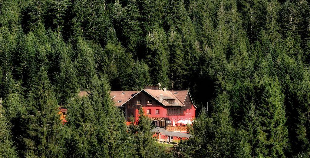 ...en plein coeur de la forêt - Les Jardins de Sophie 4* Xonrupt Longemer