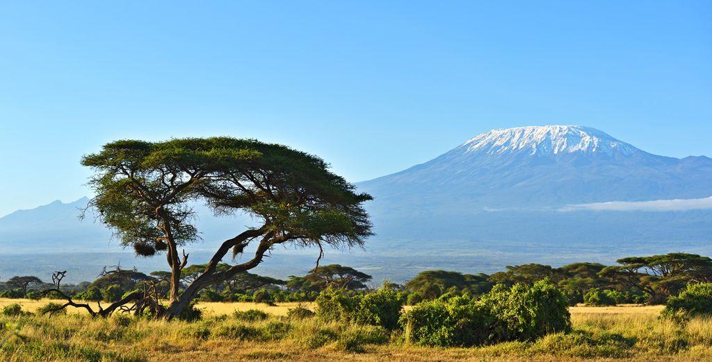 Si vous choisissez l'offre en 10 nuits, vous pourrez également profiter de magnifiques vues sur le Kilimandjaro