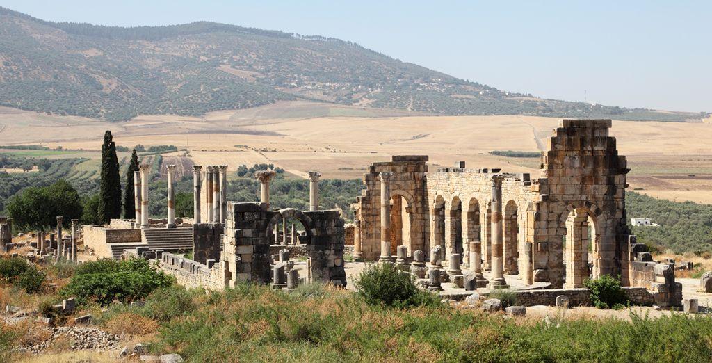 Qui entourent Volubilis, un site archéologique romain qui restera gravé dans votre mémoire