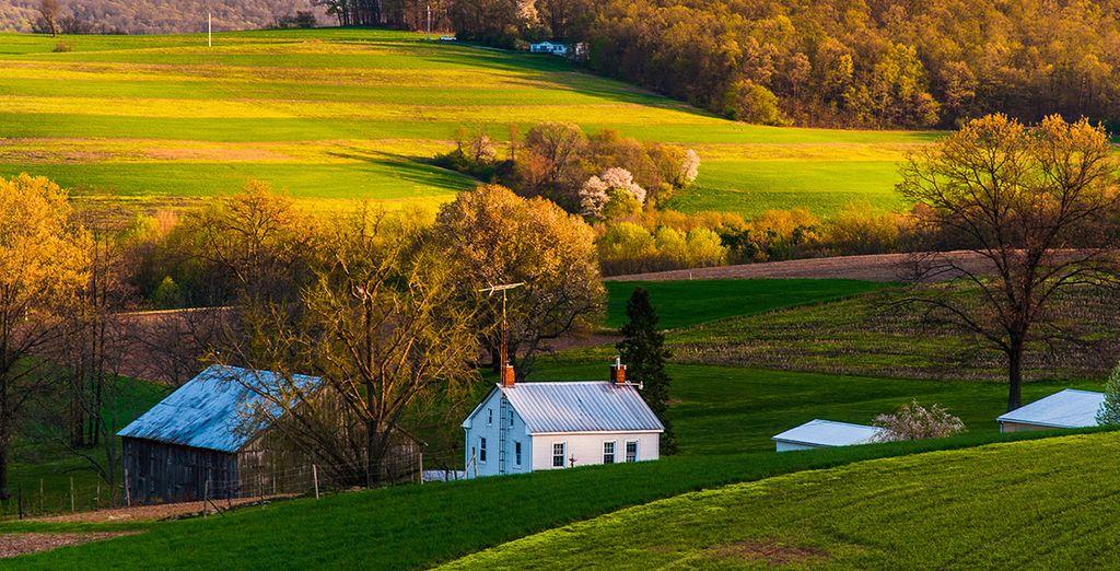 La plus ancienne implantation d'Amish