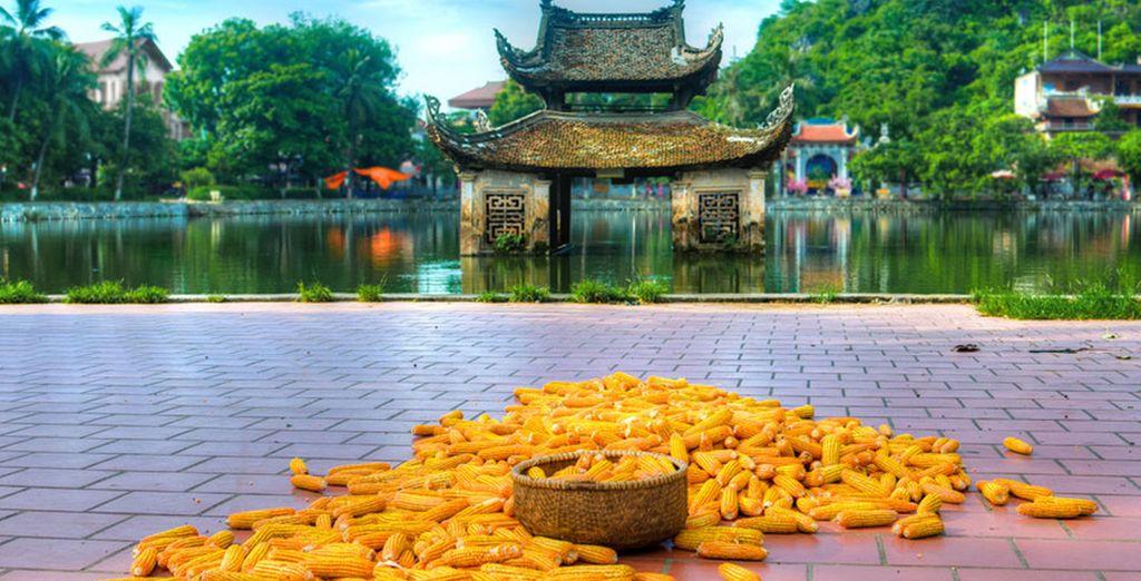 Nous vous emmenons découvrir les merveilles du Vietnam