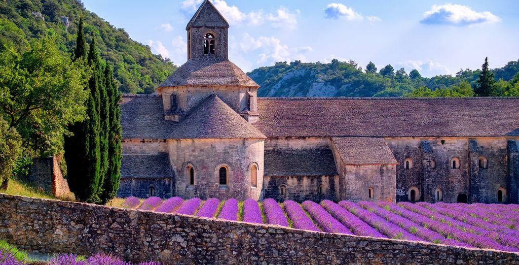 Et émerveillez-vous devant l'abbaye de Sénanque