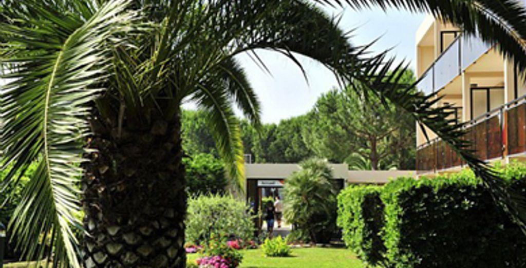 - Résidence Maeva Les Jardins Ombragés - Mandelieu-la-Napoule - France Mandelieu La Napoule