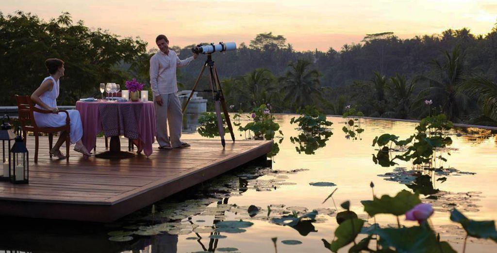 Avant de dîner sous les lueurs romantiques du soleil couchant