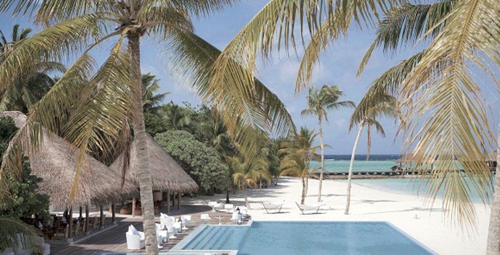 Baignade dans la piscine face au bleu turquoise de l'océan Indien