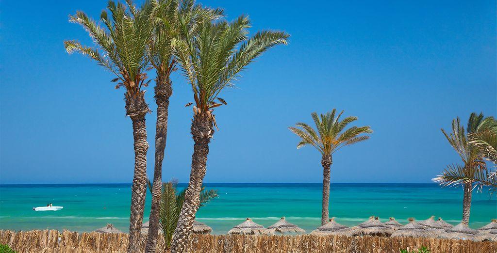 Envie de soleil, de palmier et de quiétude? - Hôtel Hasdrubal Thalassa & Spa 5* Djerba
