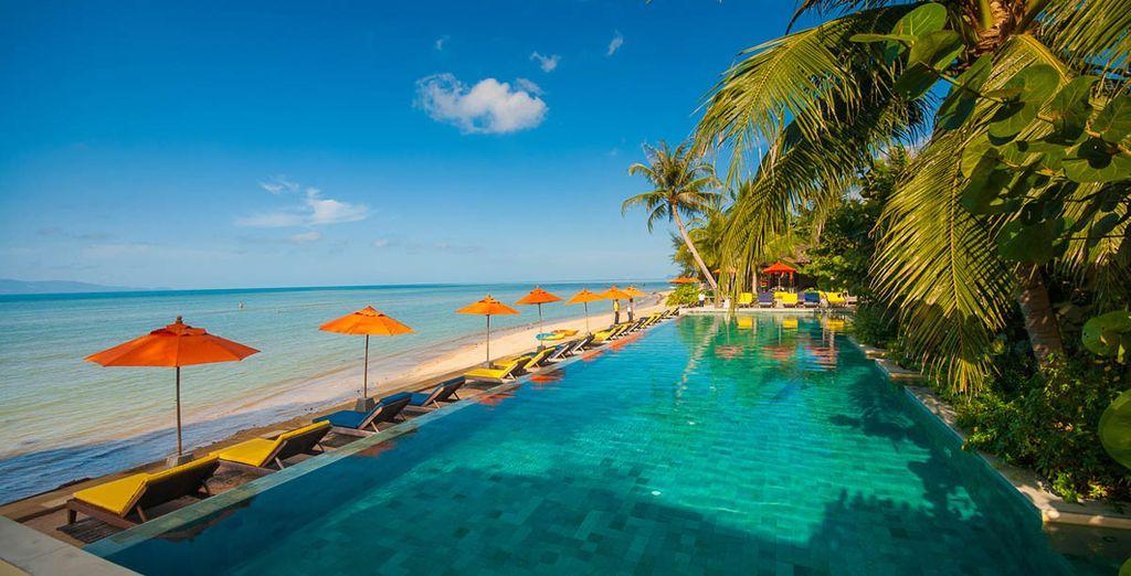 Plongez dans une somptueuse piscine pour vous prélasser...