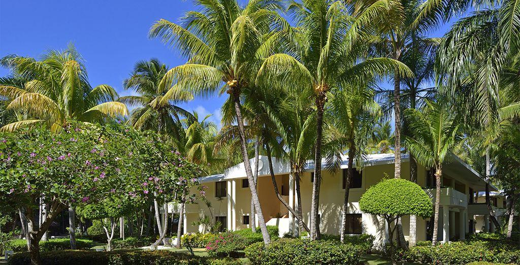 Pour un séjour au coeur d'une nature tropicale...