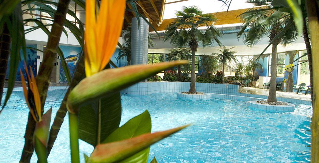 Détendez-vous à l'Aquaclub Tropical