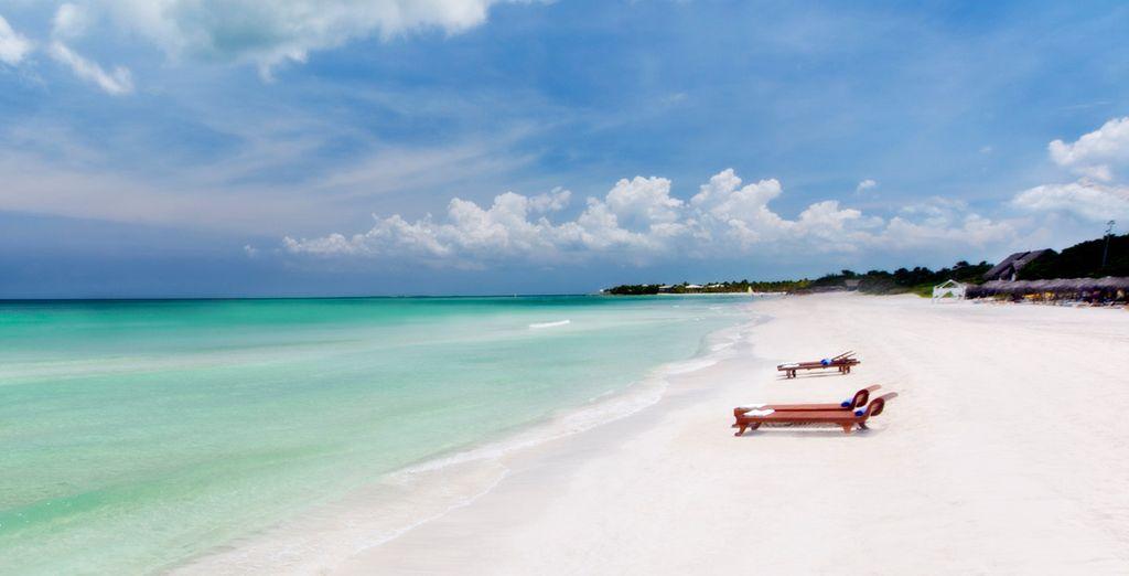 Entre la plage de sable blanc...