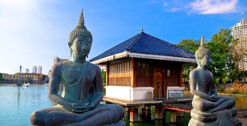 Découvrez les merveilles que vous réserve le Sri Lanka