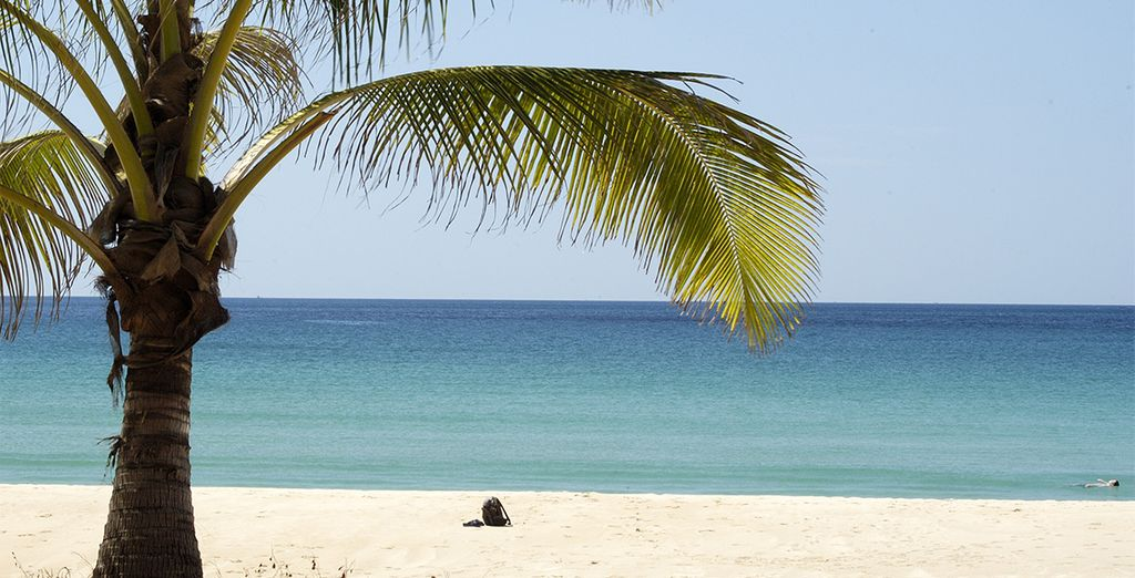 D'îles en îles et de plages en plages...
