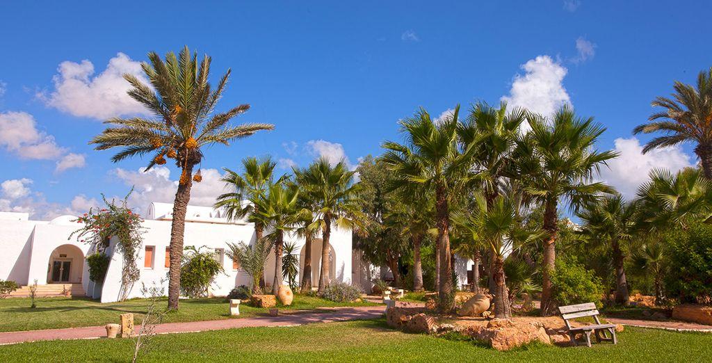 Au sein d'un hôtel au charme traditionnel, le Laico Djerba