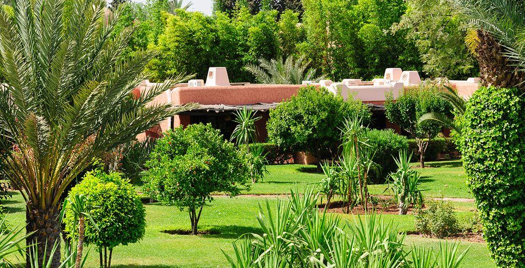 Lové dans 6 hectares de splendides jardins, au coeur de la Palmeraie... - Club Lookéa Royal Issil 4* Marrakech