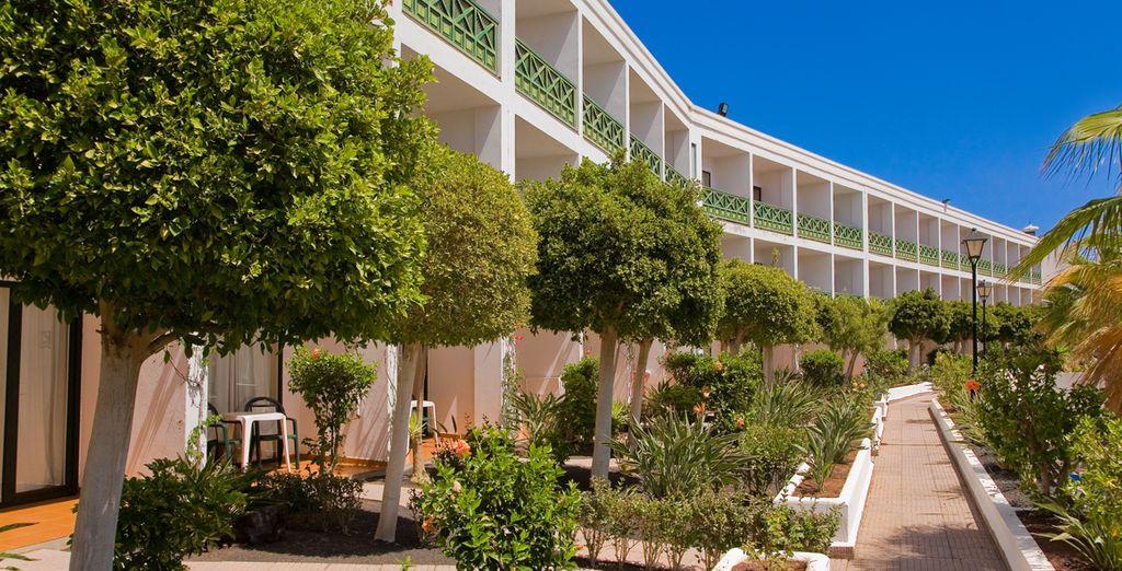 Installez-vous au Diverhotel Playaverde... Un hôtel 4* aux jardins verdoyants
