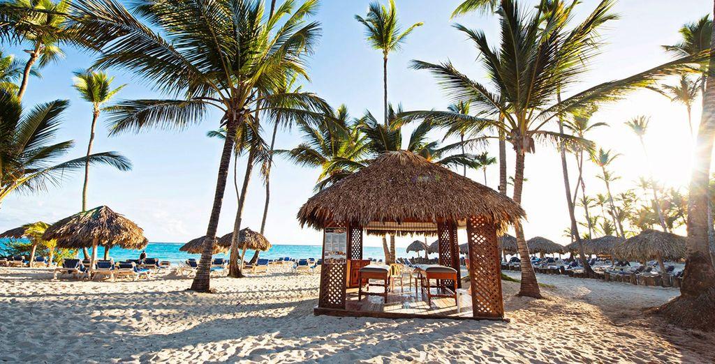 Alors prenez la direction des plages de la République Dominicaine - Kappa Club Grand Punta Cana 4* Punta Cana