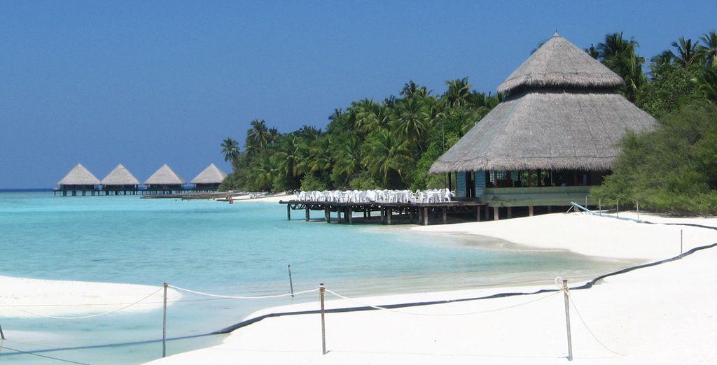 Bienvenue au Adaaran Club Rannalhi pour un séjour de rêve