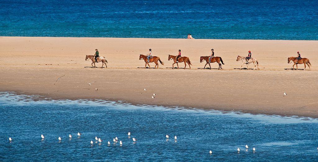 Et de nombreuses activités, comme une balade en cheval sur la plage