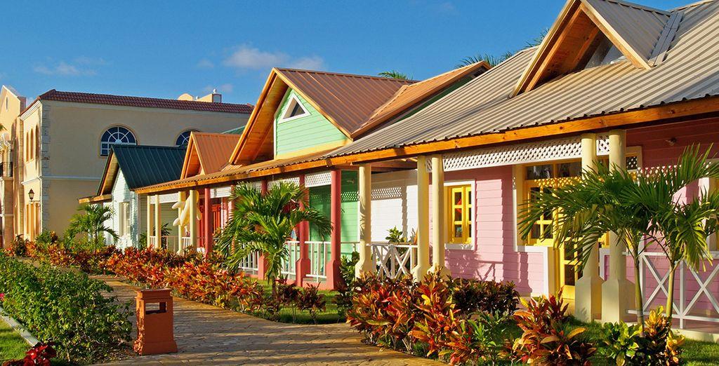 Cet établissement chaleureux & coloré vous ouvre ses portes...