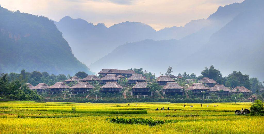 Où vivent notamment les ethnies Muong