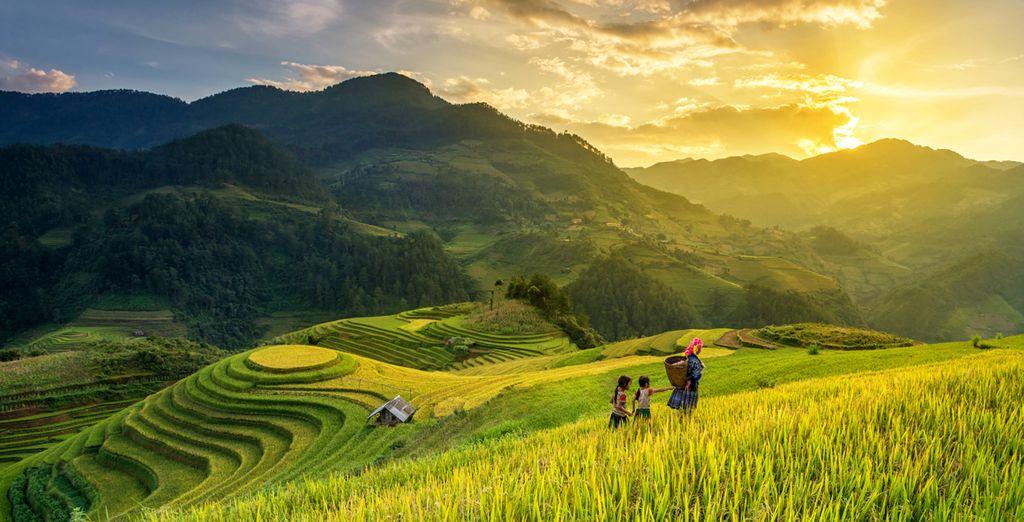 Découvrez parmi les plus beaux paysages du Vietnam