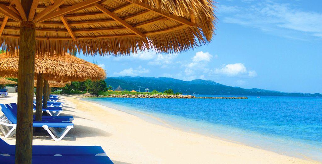 Rendez-vous sur les plages de Montego Bay...