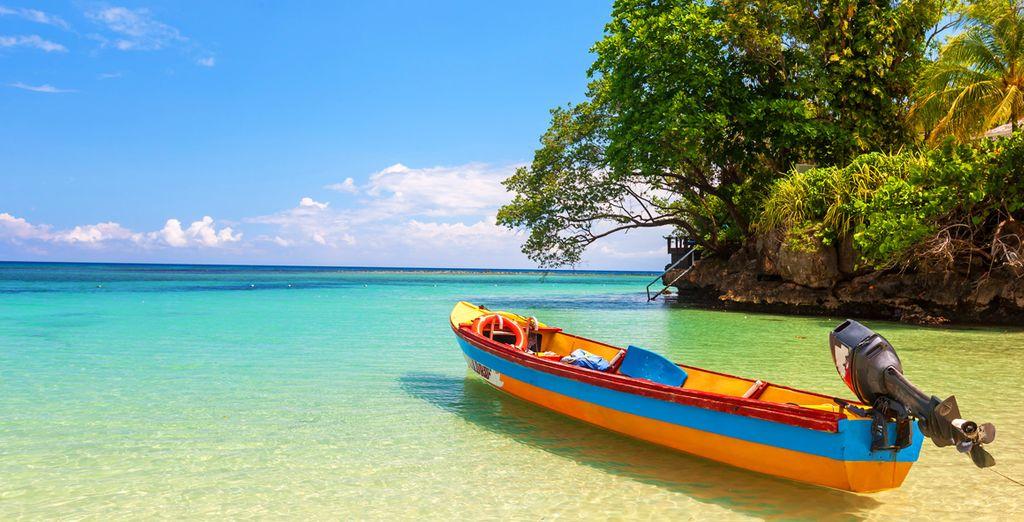 Venez vite découvrir les trésors de la Jamaïque !