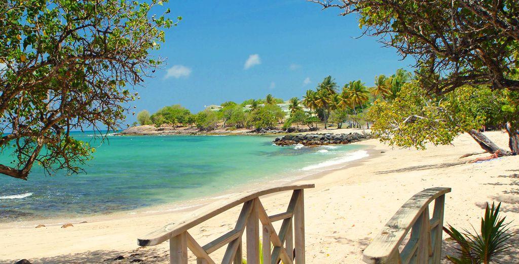 Où de bronzer sur les plages au sud de l'île...