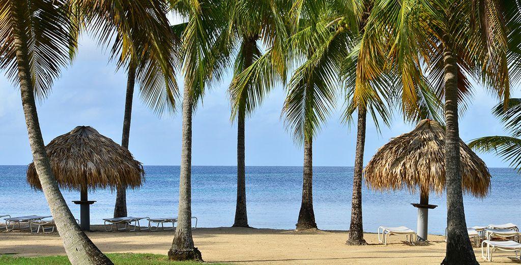 Et découvrez les paysages de carte postale de l'île...