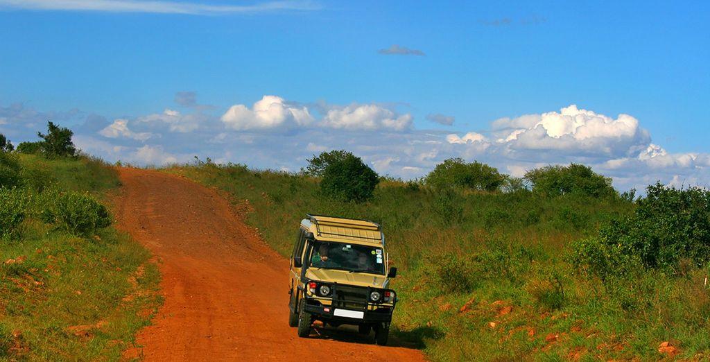 Bon voyage au Kenya!