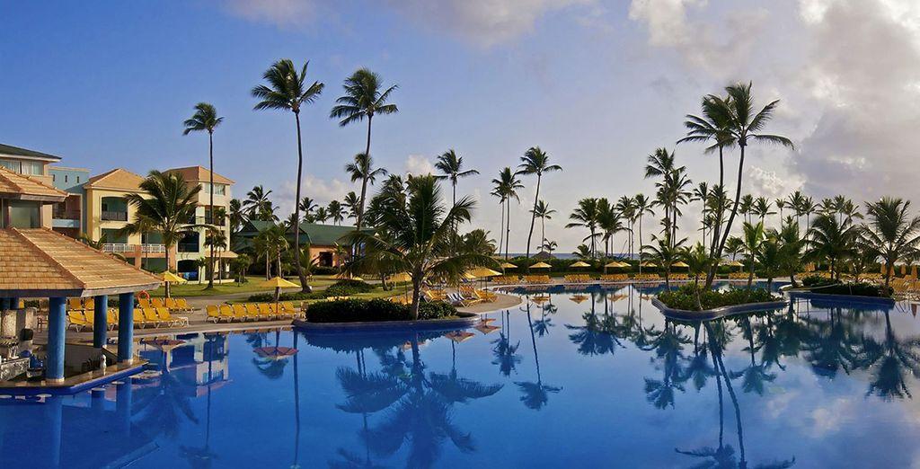Alors prêt pour un séjour sous les tropiques ?