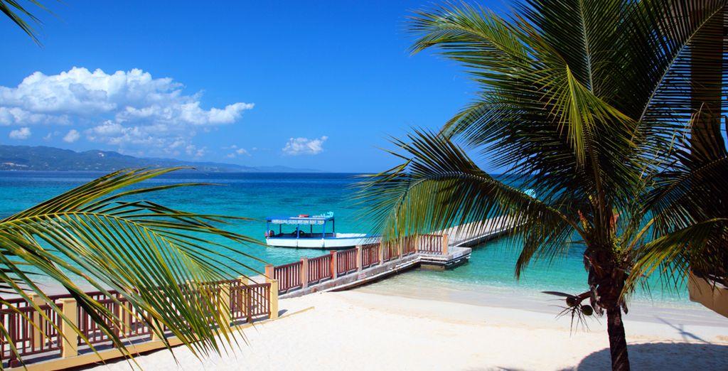Au cœur des Caraïbes...