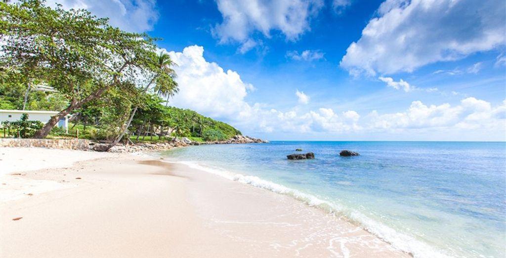 Votre hôtel, le Sea Dance, se trouve au bord de l'eau...