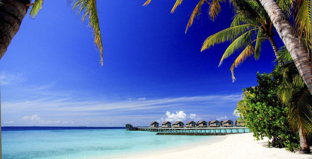 Bienvenue sur l'atoll Giraavaru !