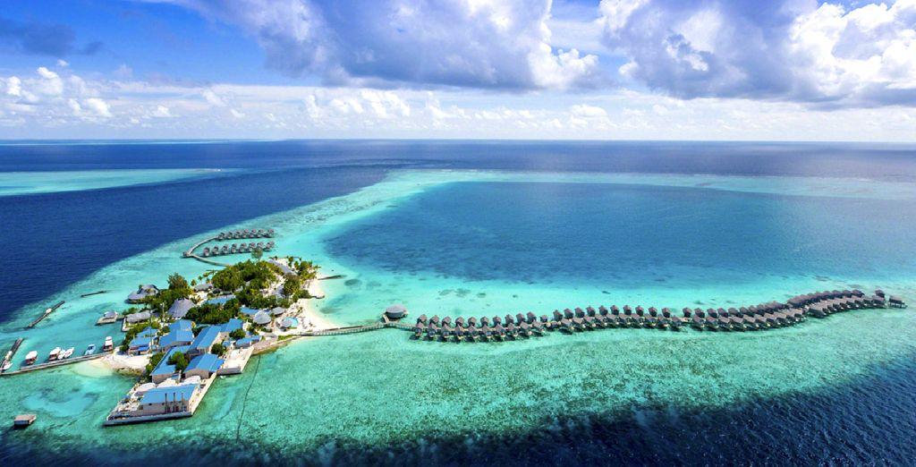 Un véritable paradis terrestre s'offre à vous !