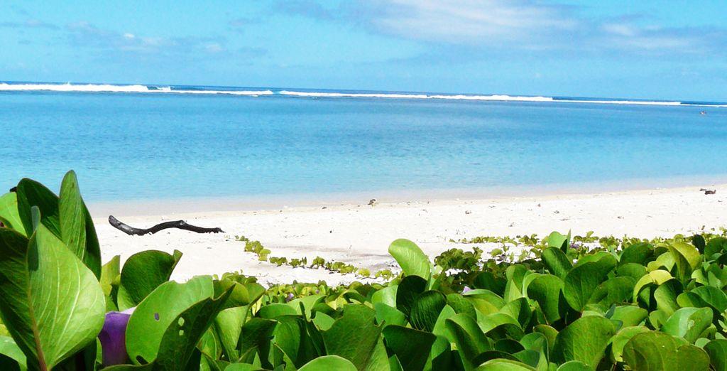 A quelques pas du lagon paradisiaque...