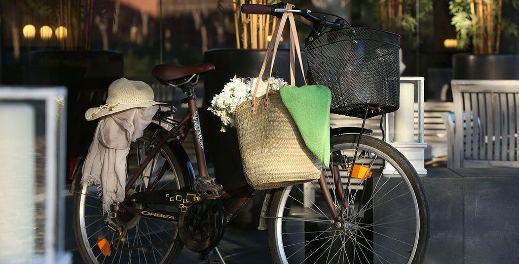 Ou de vous offrir une virée bucolique à vélo