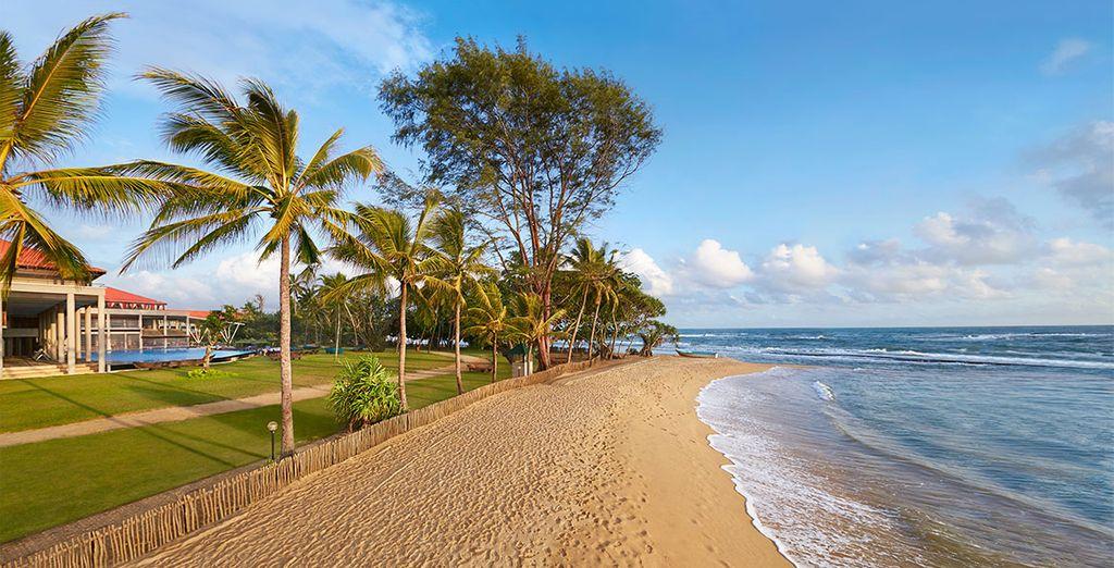 Ou de profiter de longues promenades sur les plages sauvages du pays