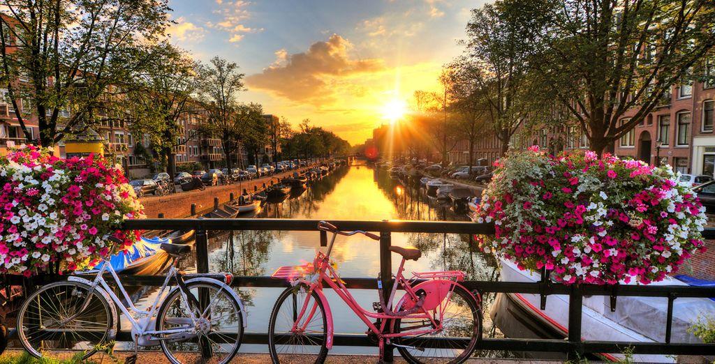 Lors d'une escapade à Amsterdam