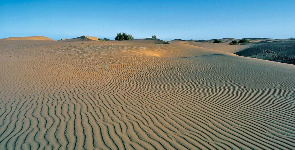 À moins que vous ne préfériez ses somptueuses dunes de sable !