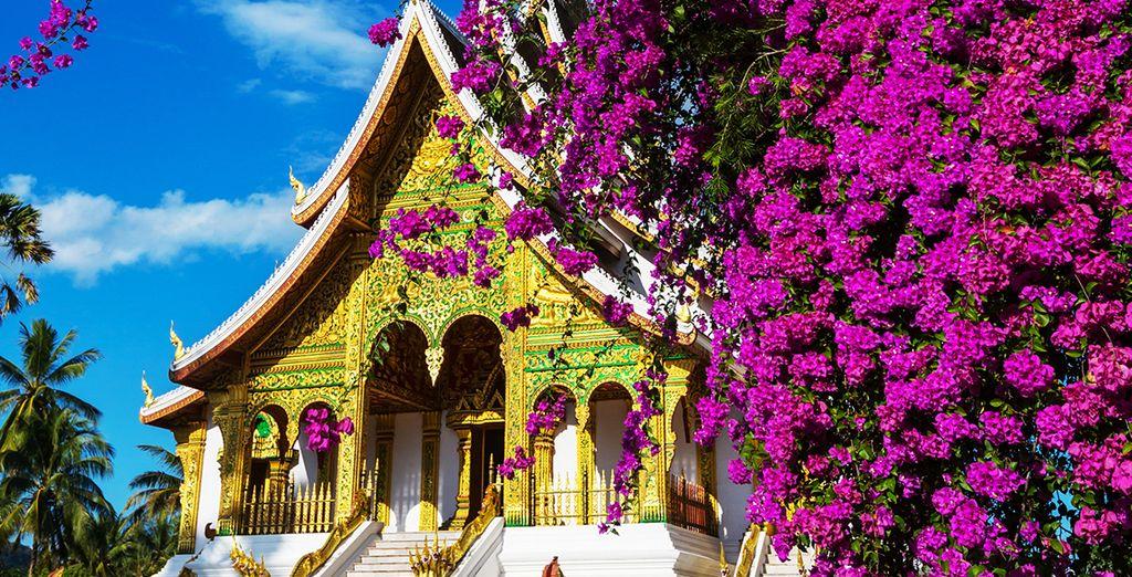 Visitez les trésors de Luang Prabang