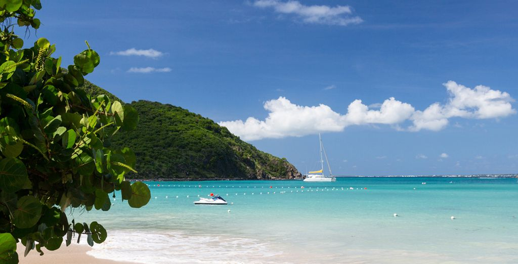 Bon voyage aux Antilles !