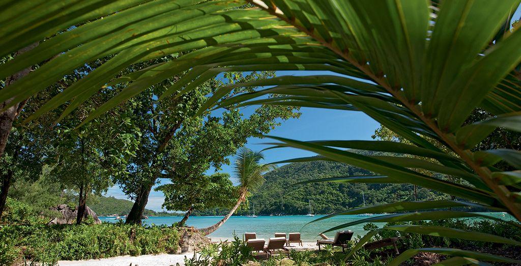 Vous ne rêvez pas... vous êtes arrivés aux Seychelles