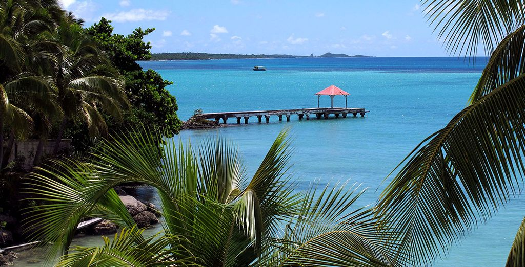 Bon séjour en Guadeloupe !