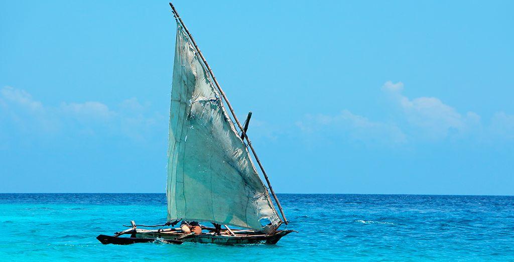 Laissez-vous séduire par l'appel de l'Océan Indien