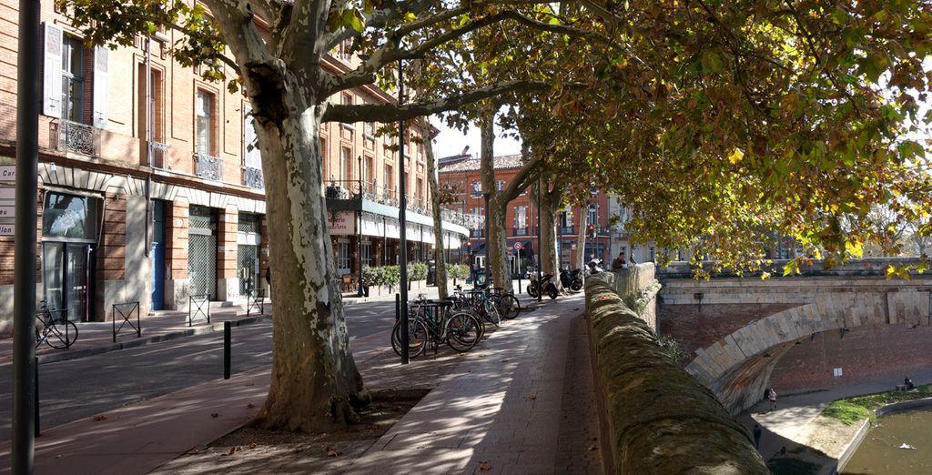 Partez ensuite à la découverte des rues de Toulouse