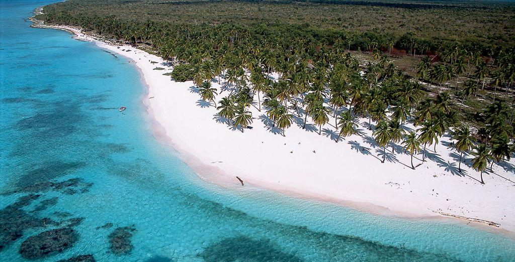 Quoiqu'il arrive, entre plages et cocotiers...