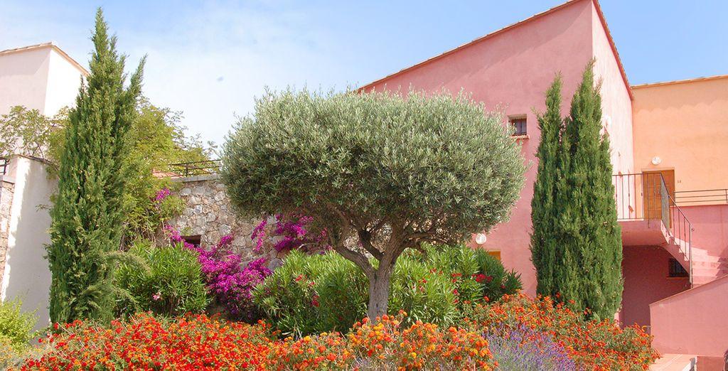 La résidence Les Hameaux de Capra Scorsa vous accueille dans un cadre préservé...