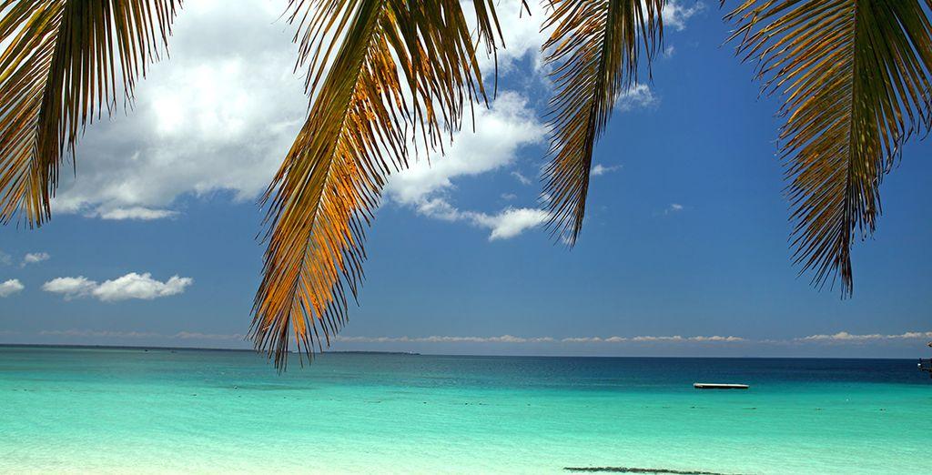 Découvrez les merveilles de Zanzibar...